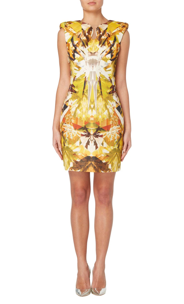 Designed by the late Alexander McQueen for his Spring Summer 2009 collection, 'Natural Distinction, Unnatural Selection', this dress was look number 24 within the show. With an enhanced padded shoulder, high hem and sharply tailored to define the