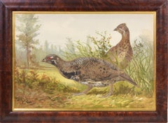 Alexander Pope, Chromolithograph of Game Birds, 1878