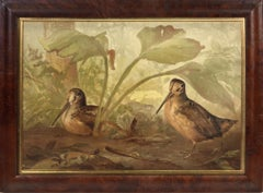 Alexander Pope, Chromolithograph of Woodcock, 1878