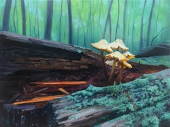 MUSHROOM FOREST, representation of flora, green, northeast forest