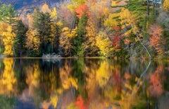 """Kaleidoscope"", Color Nature Photography, Landscape, Trees, Autumn, Yellow"