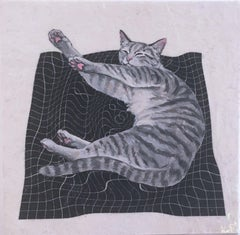 Gray Stretch Cat
