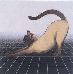 Post Catnap