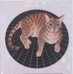 Stripe Cat
