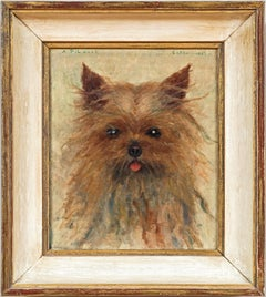 Dog Portrait of a Yorkshire Terrier