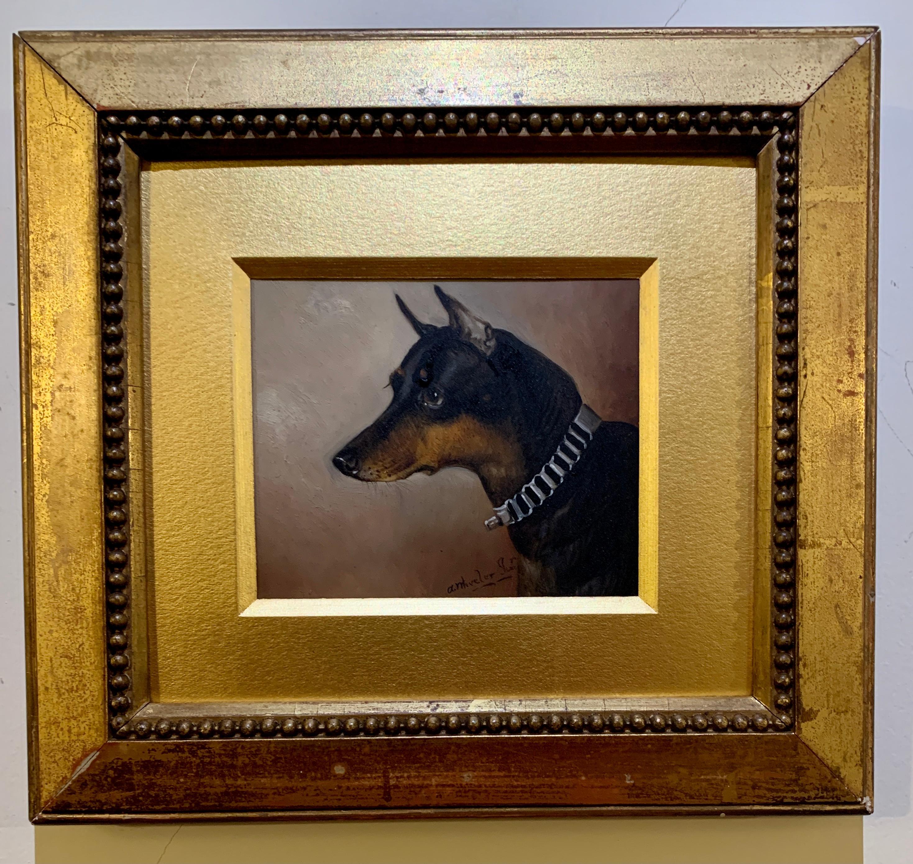 Victorian English 19th century portrait of a Pinscher dog.