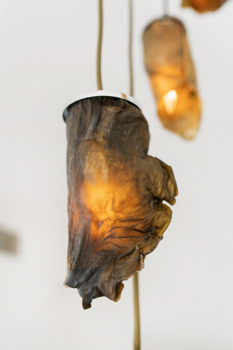 Hand-Crafted Algae Chandelier, Contemporary Customizable Lighting in Natural, Organic Algae For Sale