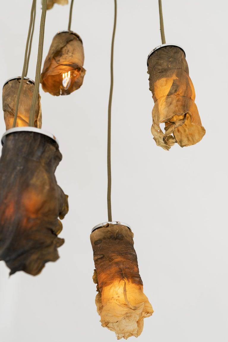 Algae Chandelier, Contemporary Customizable Lighting in Natural, Organic Algae For Sale 1