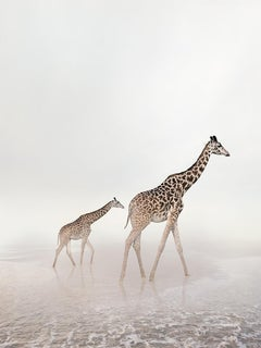 Go Giraffe