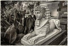 Doheny Sphinx