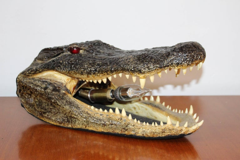 Alligator Head Table Lamp In Good Condition For Sale In Los Angeles, CA