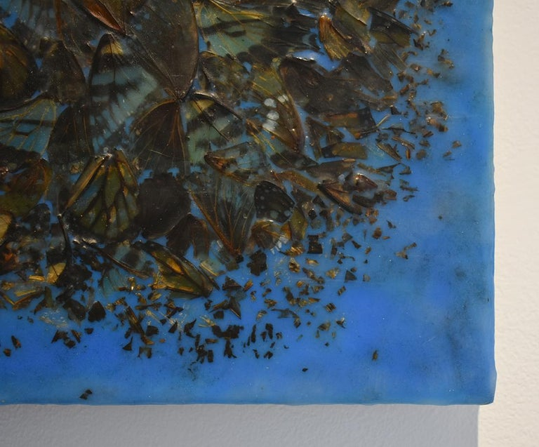 Cacophony 2 (Blue Abstract Motif of Butterfly Wings and Encaustic on Panel) - Contemporary Painting by Allyson Levy