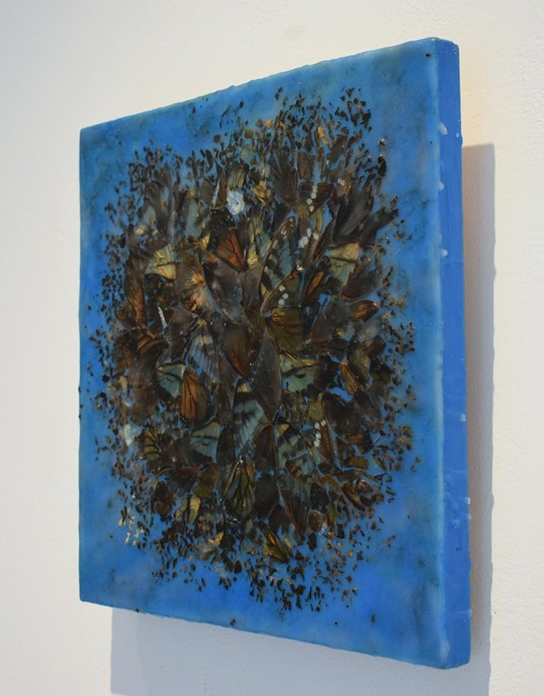 Cacophony 2 (Blue Abstract Motif of Butterfly Wings and Encaustic on Panel) For Sale 1