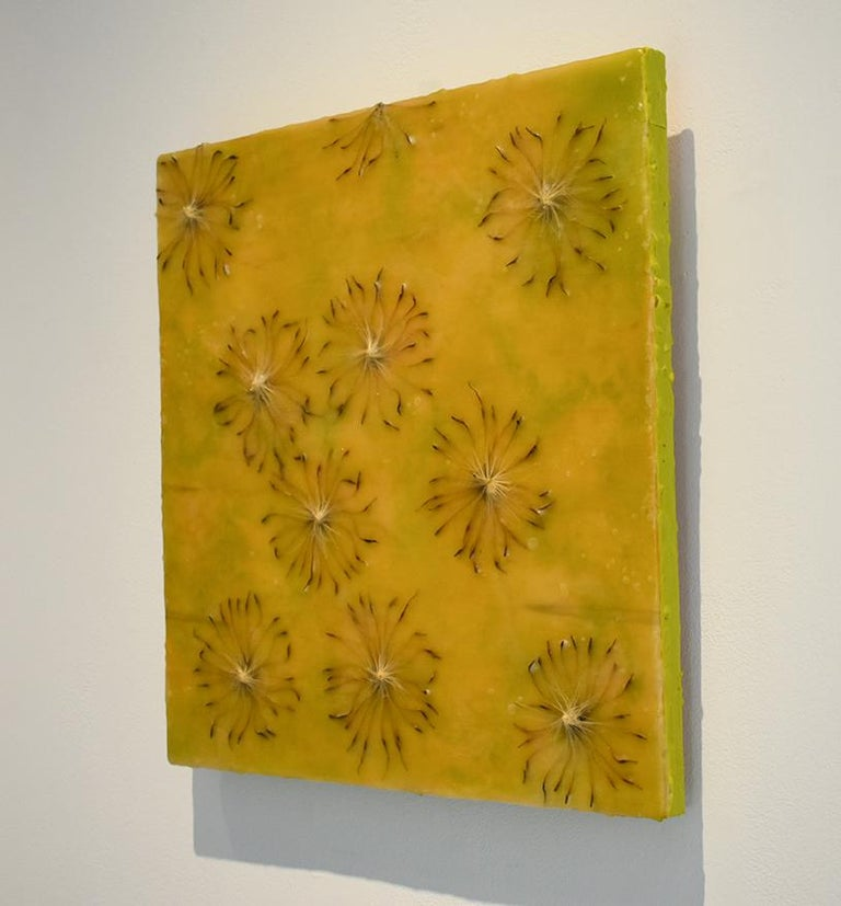 Cynara Shine: Abstract Citron Yellow Encaustic Painting on Panel with Thistles For Sale 1