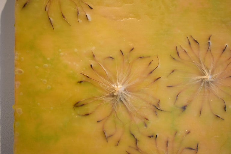 Cynara Shine: Abstract Citron Yellow Encaustic Painting on Panel with Thistles For Sale 4