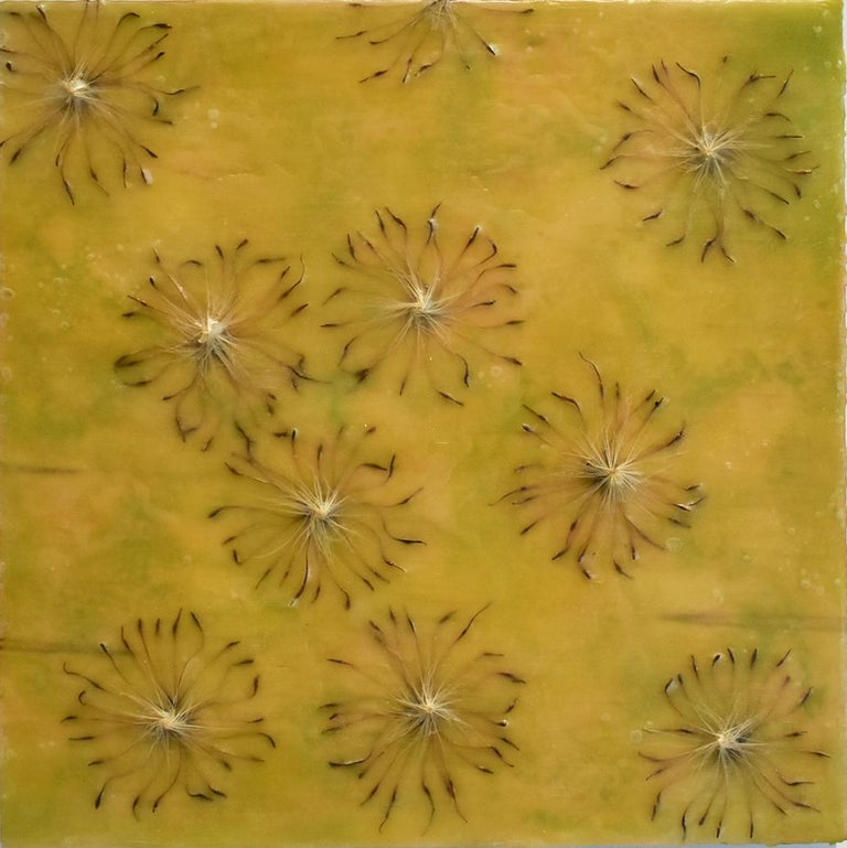 Allyson Levy Abstract Painting - Cynara Shine: Abstract Citron Yellow Encaustic Painting on Panel with Thistles