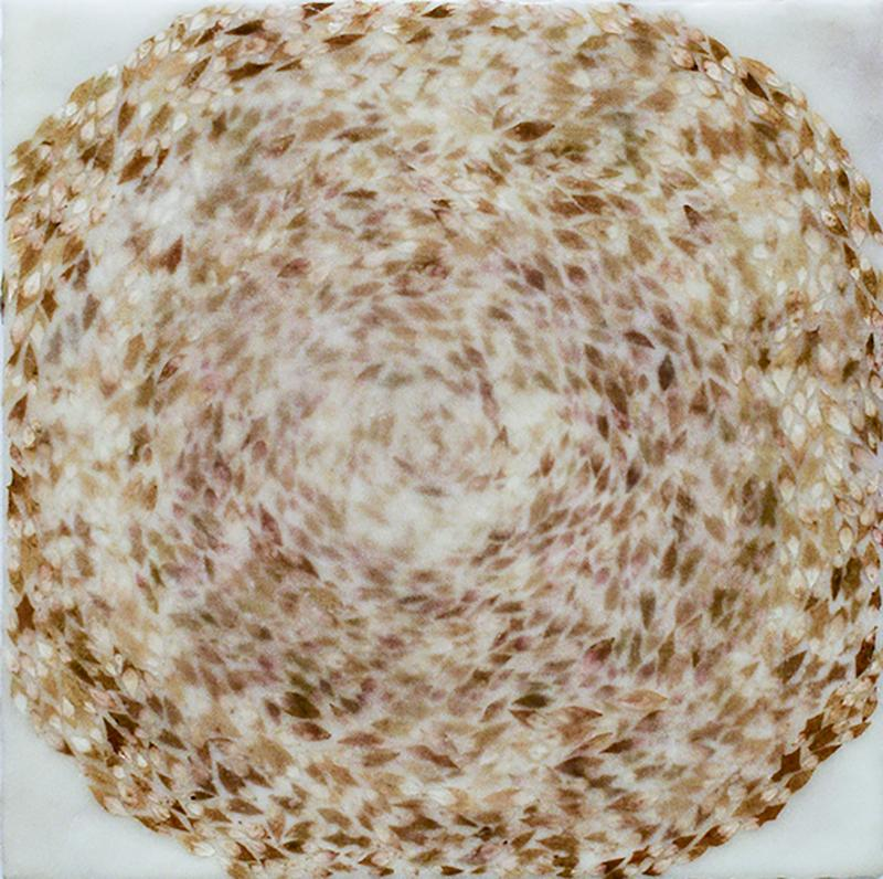 Euphorbic 14 (Abstract Encaustic Painting with Neutral Palette on White)