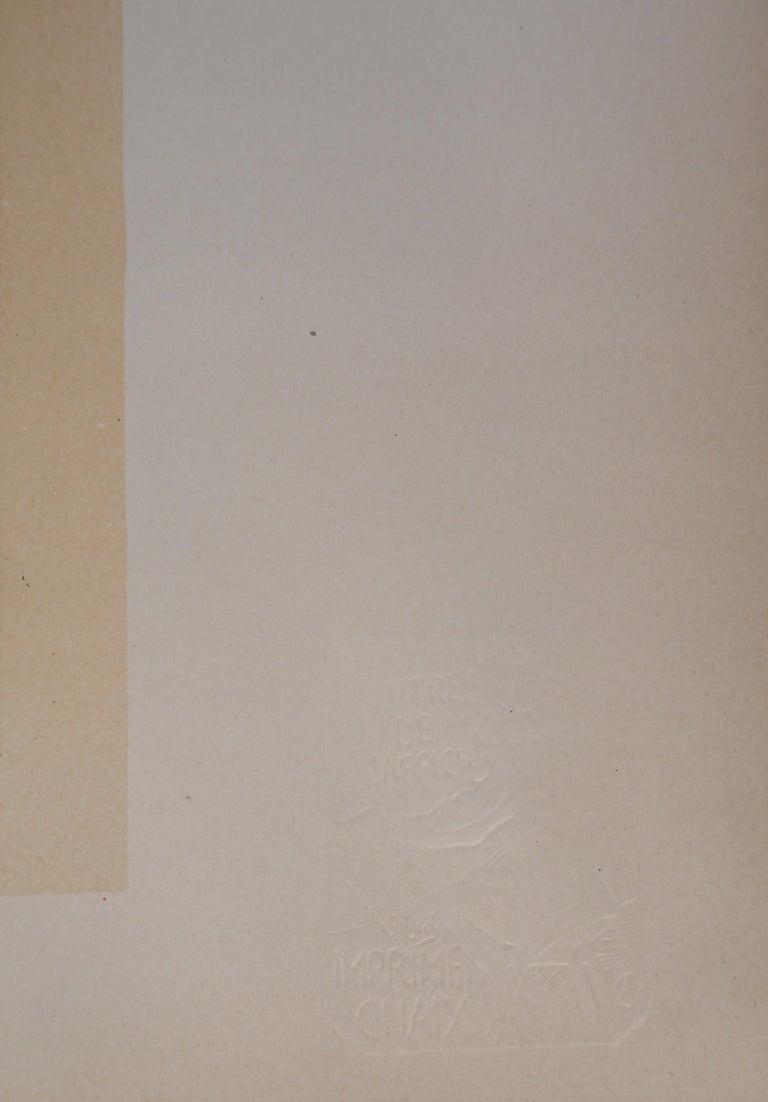 Lorenzaccio (Sarah Bernhardt) - Lithograph (Les Maîtres de l'Affiche), 1897 For Sale 6