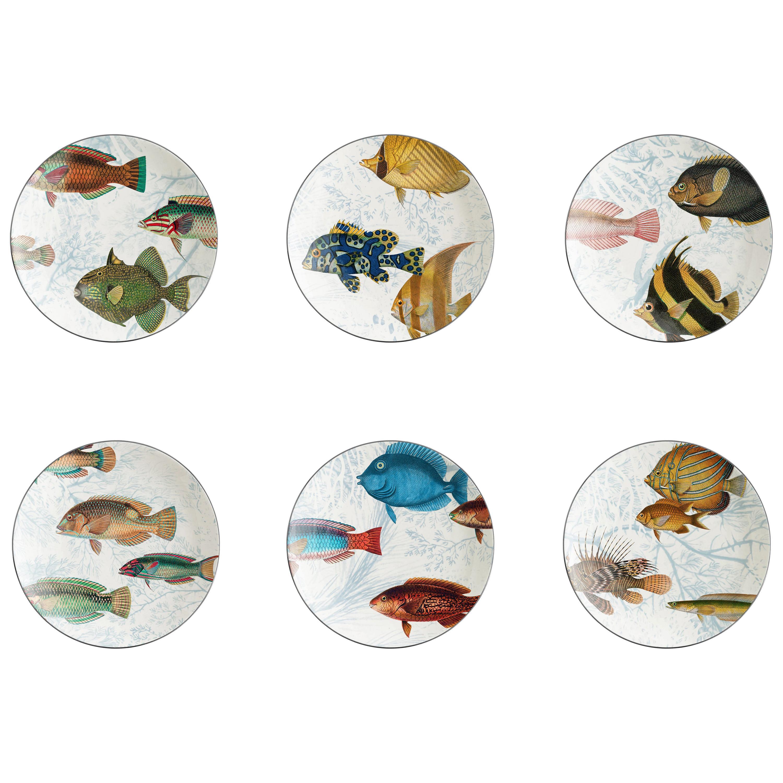 Amami, Six Contemporary Porcelain Dessert Plates with Decorative Design