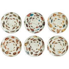 Amami, Six Contemporary Porcelain Dinner Plates with Decorative Design