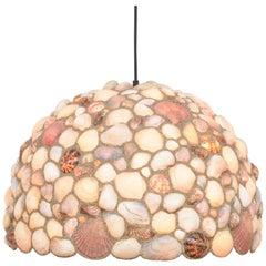 Amazing Dome Seashell Chandelier