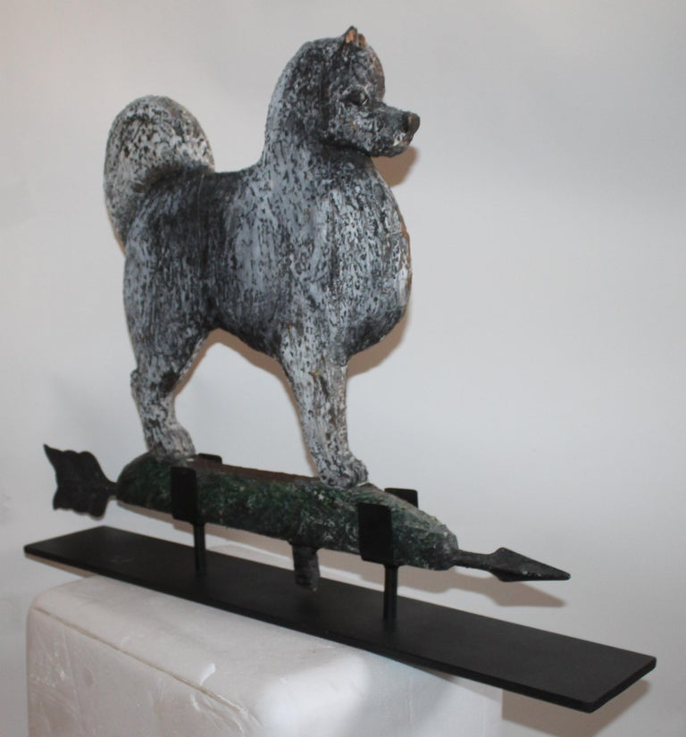 This hand carved and painted dog weather vane has the best patina and is signed by the carver or maker. On the green painted underside the carving reads out- Robin Batcheller New York City The iron directional were clearly taken from another vane
