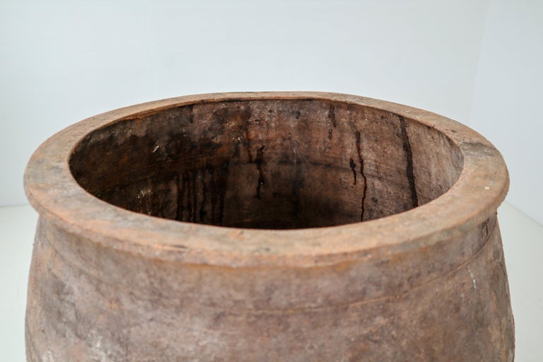 Amazing Large Greek Patinated Terracotta Jar from the Early 20th Century For Sale 5