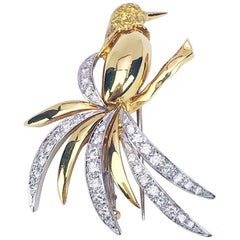 Ambrosi 18 Karat Yellow Gold Hummingbird Brooch with Yellow and White Diamonds