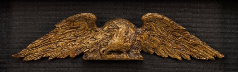 American Architectural Gilt Eagles, Hand Carved Matching Set, Late 19th Century For Sale 1
