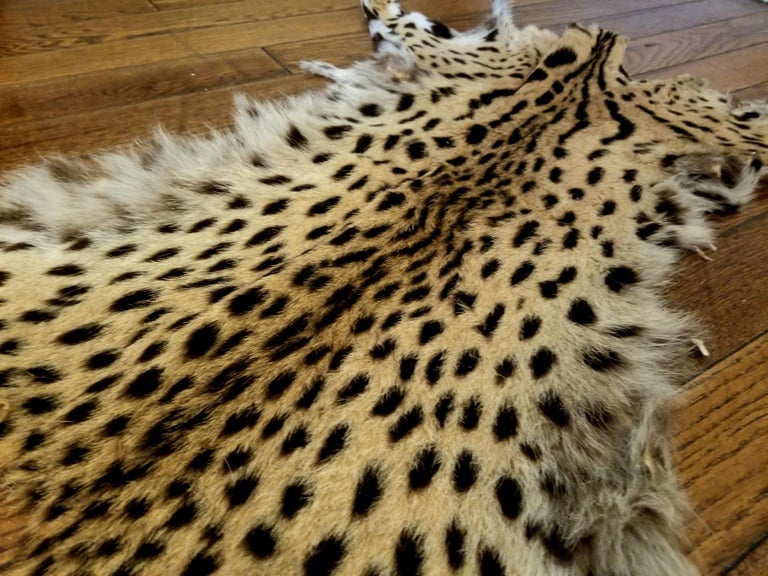 Mid-Century Modern American Cheetah Original Fur For Sale