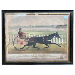 """American Lithograph Print of """"The Great Roan Horse Capt. McGowan"""", circa 1865"""