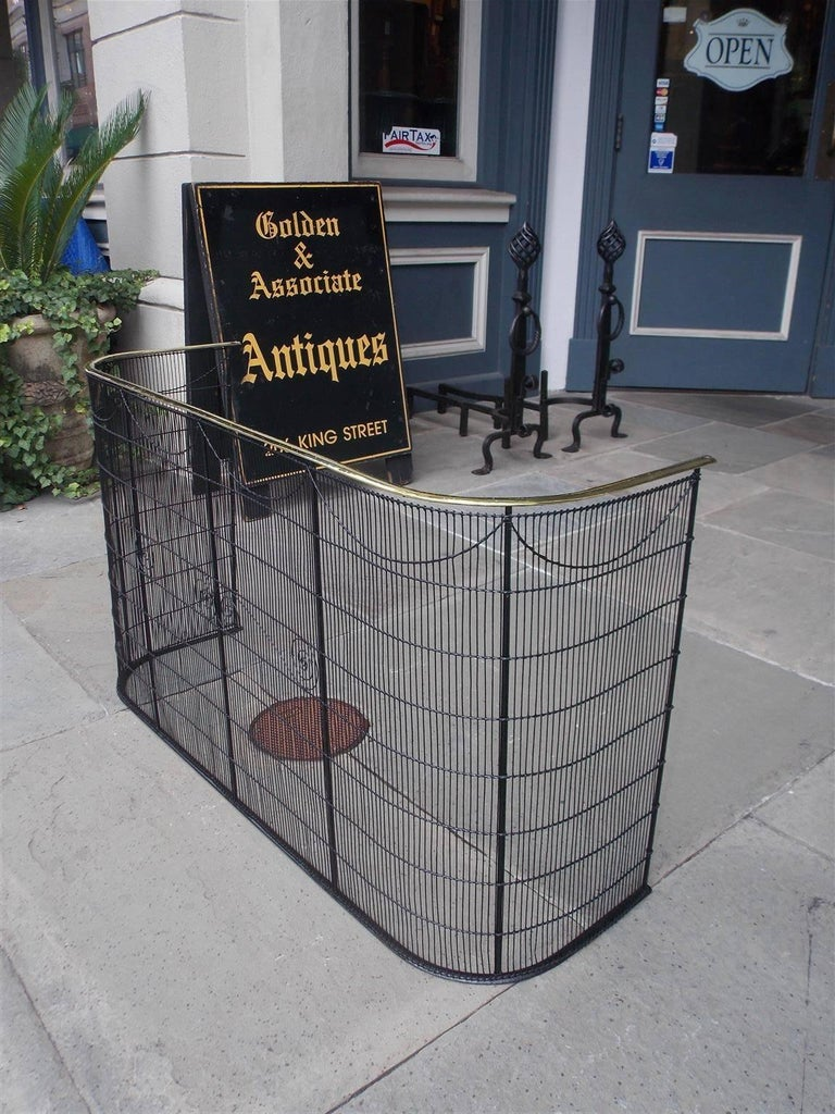 American Colonial American Wrought Iron and Brass Rail Nursery Artistic Fire Place Fender C. 1810 For Sale