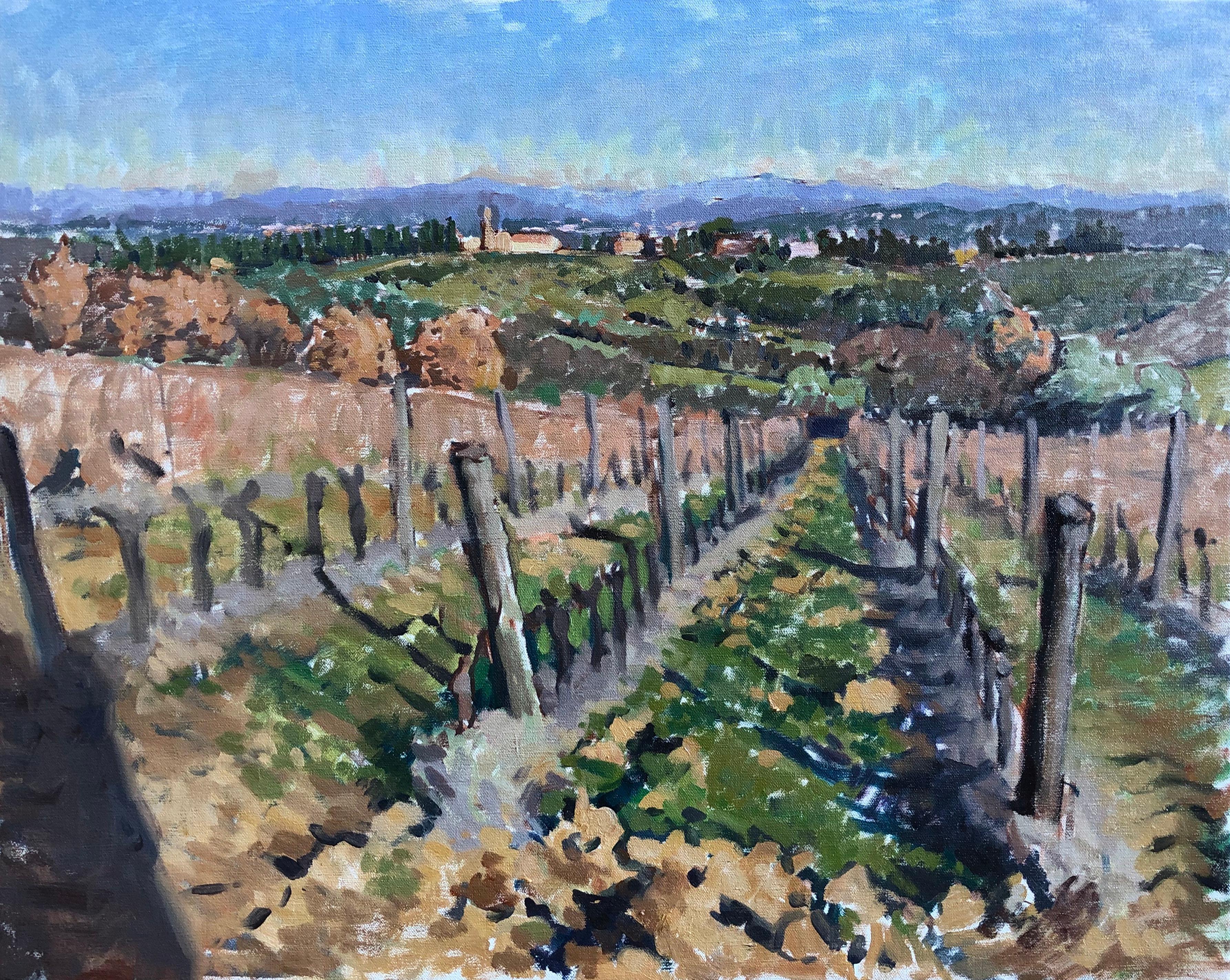 Vines in Noce