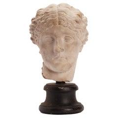 Academic Cast Depicting a Roman Women Head, Italy 1890