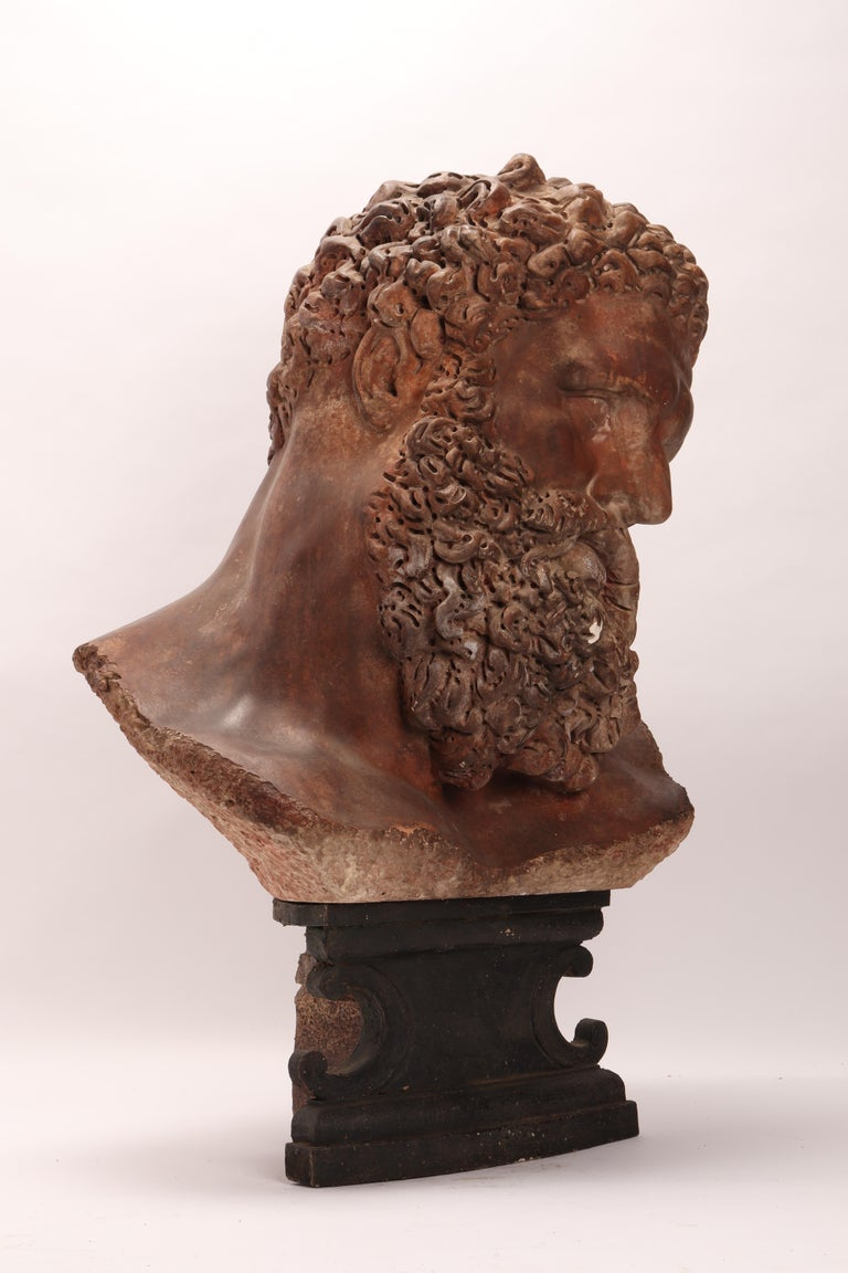 Academic Cast Depicting Hercules Head, Italy, 1880 In Excellent Condition For Sale In Milan, IT