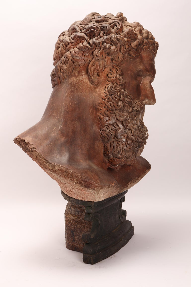 Academic Cast Depicting Hercules Head, Italy, 1880 For Sale 1