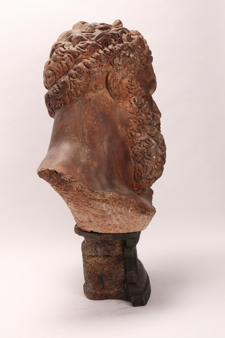 Academic Cast Depicting Hercules Head, Italy, 1880 For Sale 2