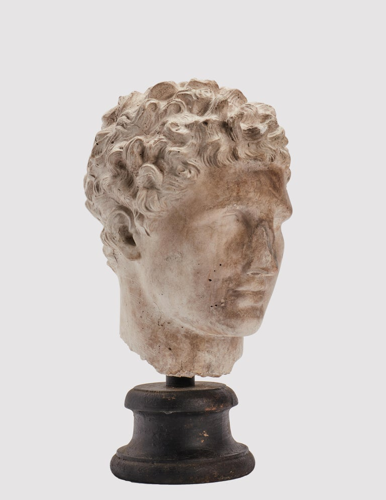 Academic Cast Depicting Hermès Head, Italy, 1890 In Excellent Condition In Milan, IT