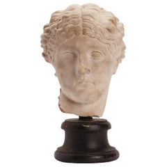 Academic Cast of a Roman Women Head, Italy, 1890