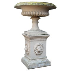 Antique Buff Terracotta Tazza Urn on Pedestal