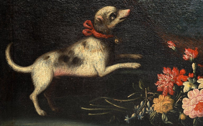 Rococo Early 18th Century Floral Still Life, Piedmontese School with a Dog and Bird For Sale