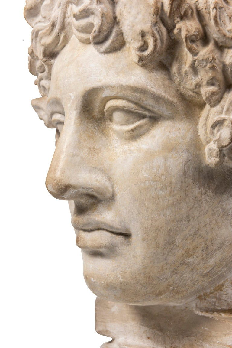 Neoclassical An Early 20th Century Plaster Bust of Antinous For Sale