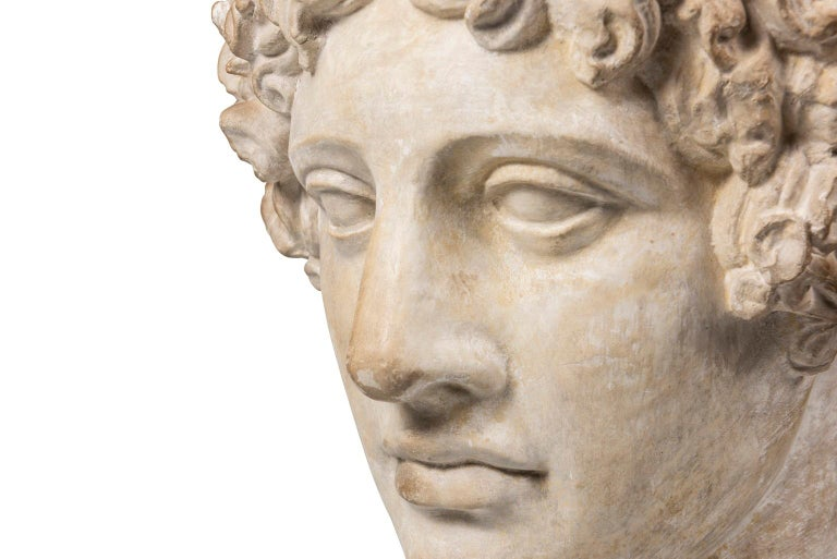 English An Early 20th Century Plaster Bust of Antinous For Sale