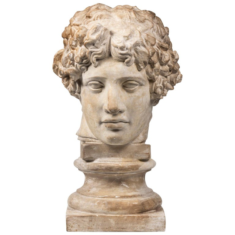 An Early 20th Century Plaster Bust of Antinous For Sale