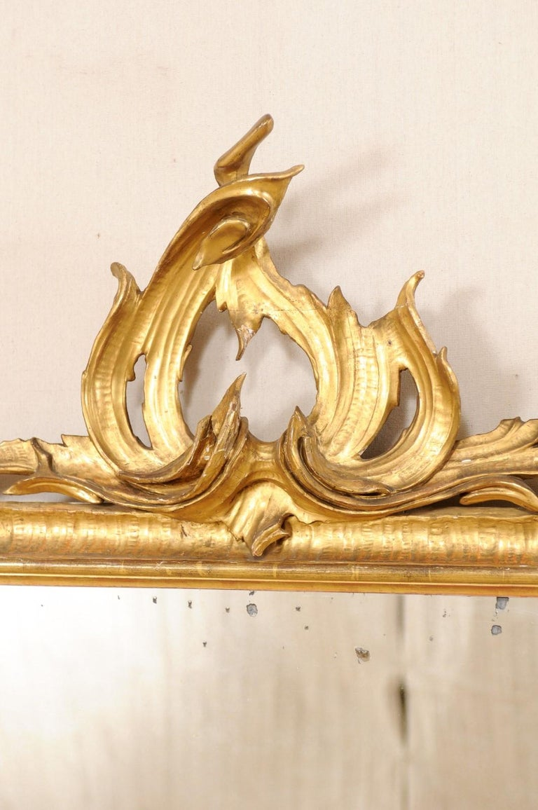 Italian Tall Carved and Giltwood Mirror, Early 20th Century  For Sale 1