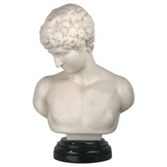 Italian Marble Bust of  Narcissus, after the Antique