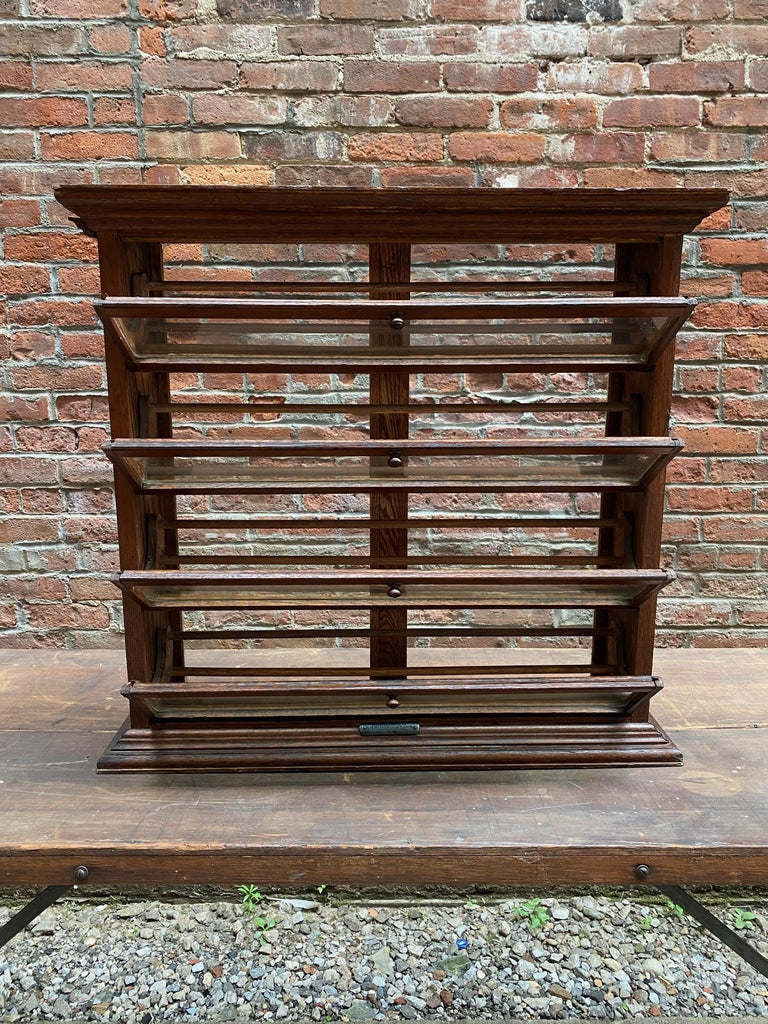 19th Century a. N. Russell and Sons Oak and Glass Display Cabinet For Sale
