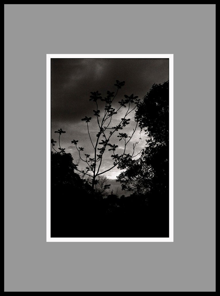 Nightfall, Portugal 2000 /Gelatin Silver Print/ Signed - Photograph by Ana Maria Cortesão
