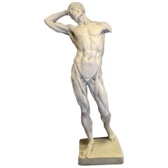 Anatomy of a Man Marble Sculpture, 20th Century