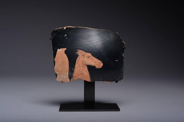 A fragment of an Attic red figure vase, dating to the 4th century BC.  From the shoulder of a large vase, preserving the profile of a horse, painted in black with quick, confident strokes. The outline of another horse's head to its side, shown